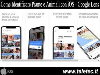 Come Identificare Piante e Animali con l'iPhone - Google Lens