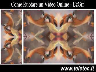 Come Ruotare un Video Online - Ezgif